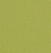 Outdura Fabric 5432 Canvas Pesto