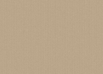 Outdura Fabric 5459 Stucco (Solid)